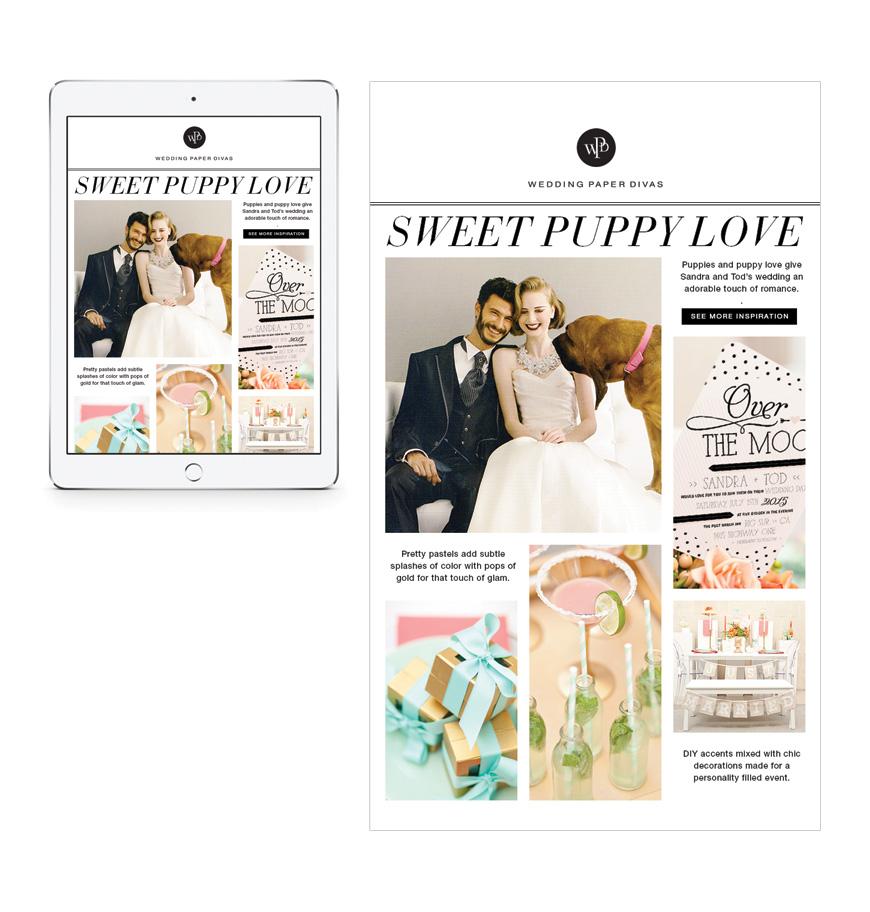 Wedding Paper Divas Brand Expression Hmm Design Daniel Louie